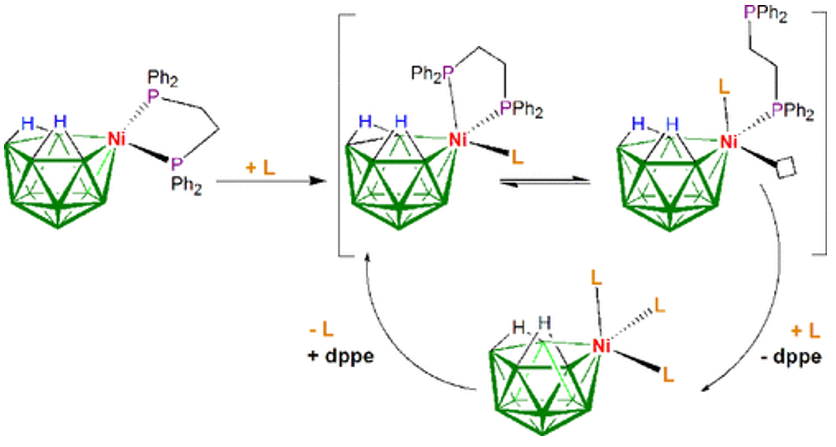 Ligand Lability Driven by Metal-to-Borane Pseudorotation: A Mechanism for Ligand Exchange
