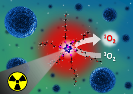 A water-soluble octahedral molybdenum cluster complex as a potential agent for X-ray induced photodynamic therapy