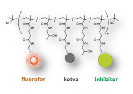 mimetika protilátek na bázi polymerů