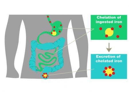 Pokroky ve vývoji polymerních léčiv