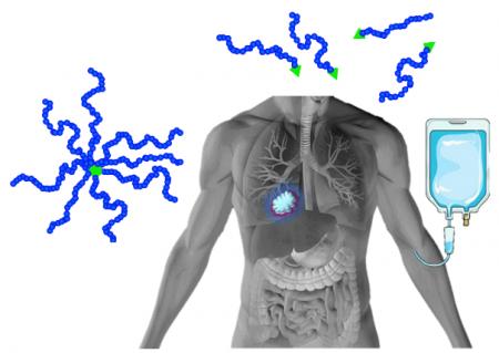 """Polymerní nanoterapeutikum s vlastnostmi nastavitelnými """"na míru"""""""